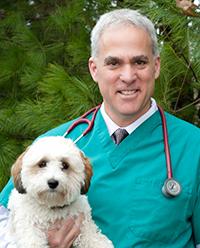 Dr.-Weitzman-crop